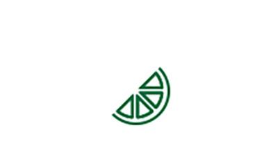 Icono de gajo de naranja del factor de riesgo de padecer cataratas asociado a deficiencias nutricionales.