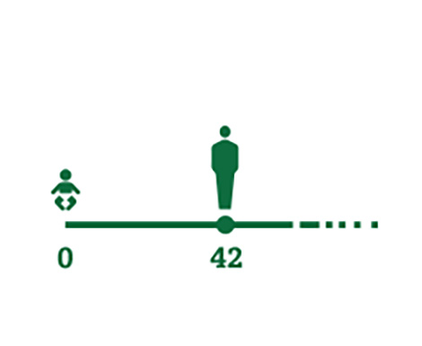 Imagen de icono de línea cronológica que representa la media de edad en la que las personas empiezan a presentar los primeros síntomas de la presbicia (42 años).