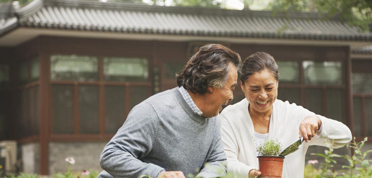 Imagen de una pareja practicando jardinería al aire libre.